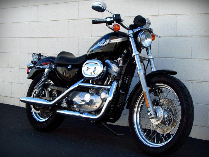Harley Sportster For Sale >> 2003 Harley-Davidson XL883 Sportster 883 100th Anniversary For Sale • J&M Motorsports